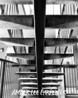 concrete rib cage
